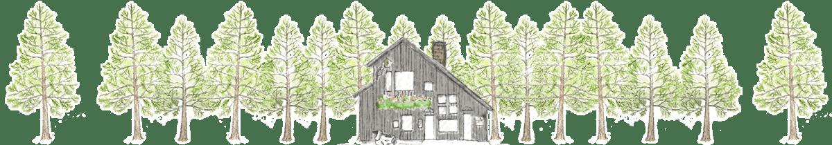 松ぼっくりはカラマツの林に囲まれた手作りアイスクリーム工房です